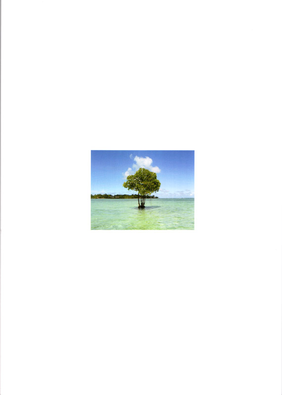 ISME Mangrove Action Plan for the sustainable management of mangroves 2004-2009 - rückseite