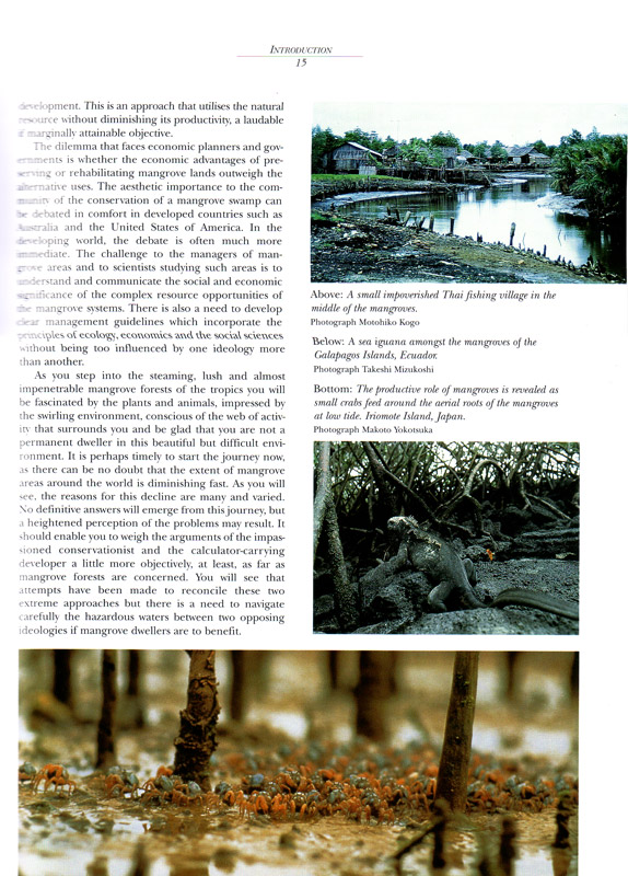 Journey Amongst Mangroves - aus dem Buch